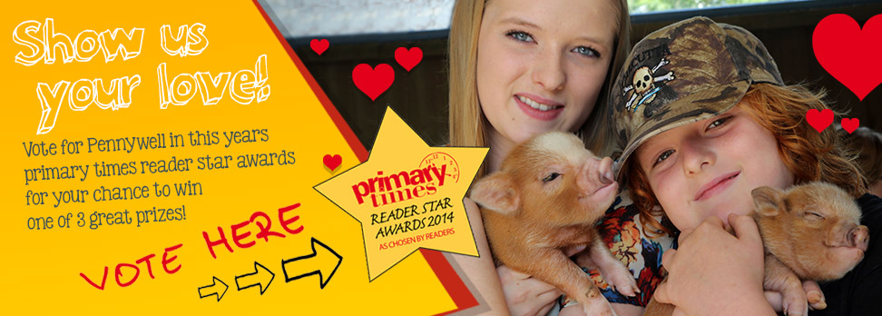 Vote for Pennywell in the Primary Times Reader Awards 2014!